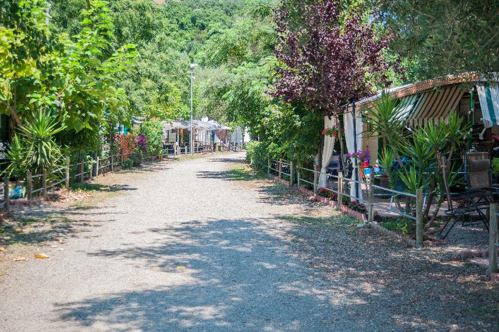 Viale casette all'Europa Unita, lo splendido campeggio-villaggio direttamente sul mare sulla costa del Cilento (bandiera blu 2016)